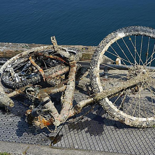 Geborgenes Fahrrad aus dem Schlick